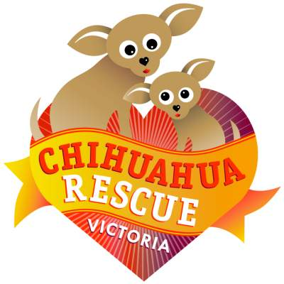 Our Chihuahua Rescue Victoria logo represents the journey a rescued Chihuahua will take to their new forever home.