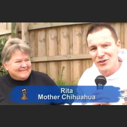 Mother Chihuahua (Rita) appeared on Hound TV in July 2009 - Season 2, Episode 7. Steven and Rita spoke about her mission to help rescued Chihuahuas find loving forever homes: this included discussing health issues, life span, and what sort of concerns adoptees need to keep in mind when considering whether to take in a rescued Chihuahua.